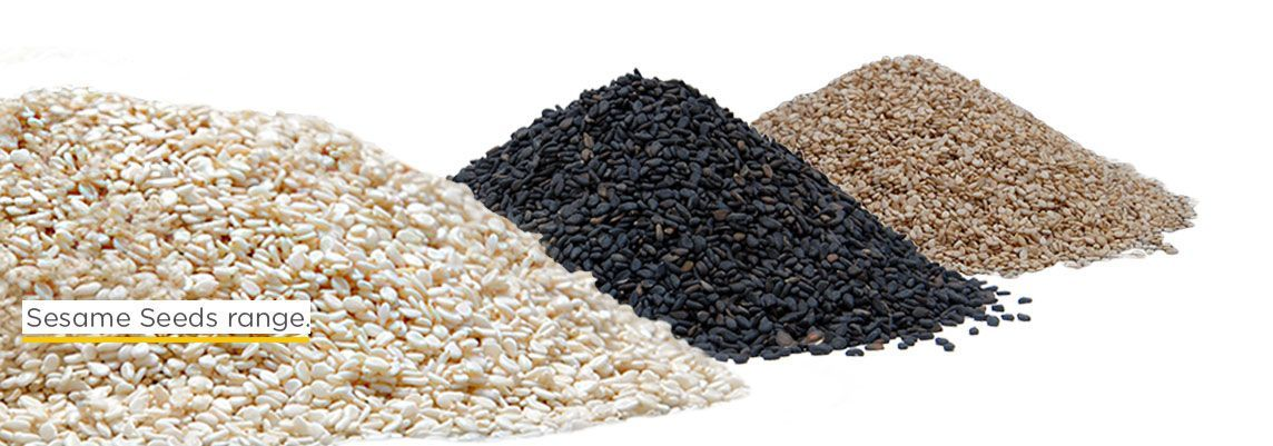 sesame-seeds-export-from-india